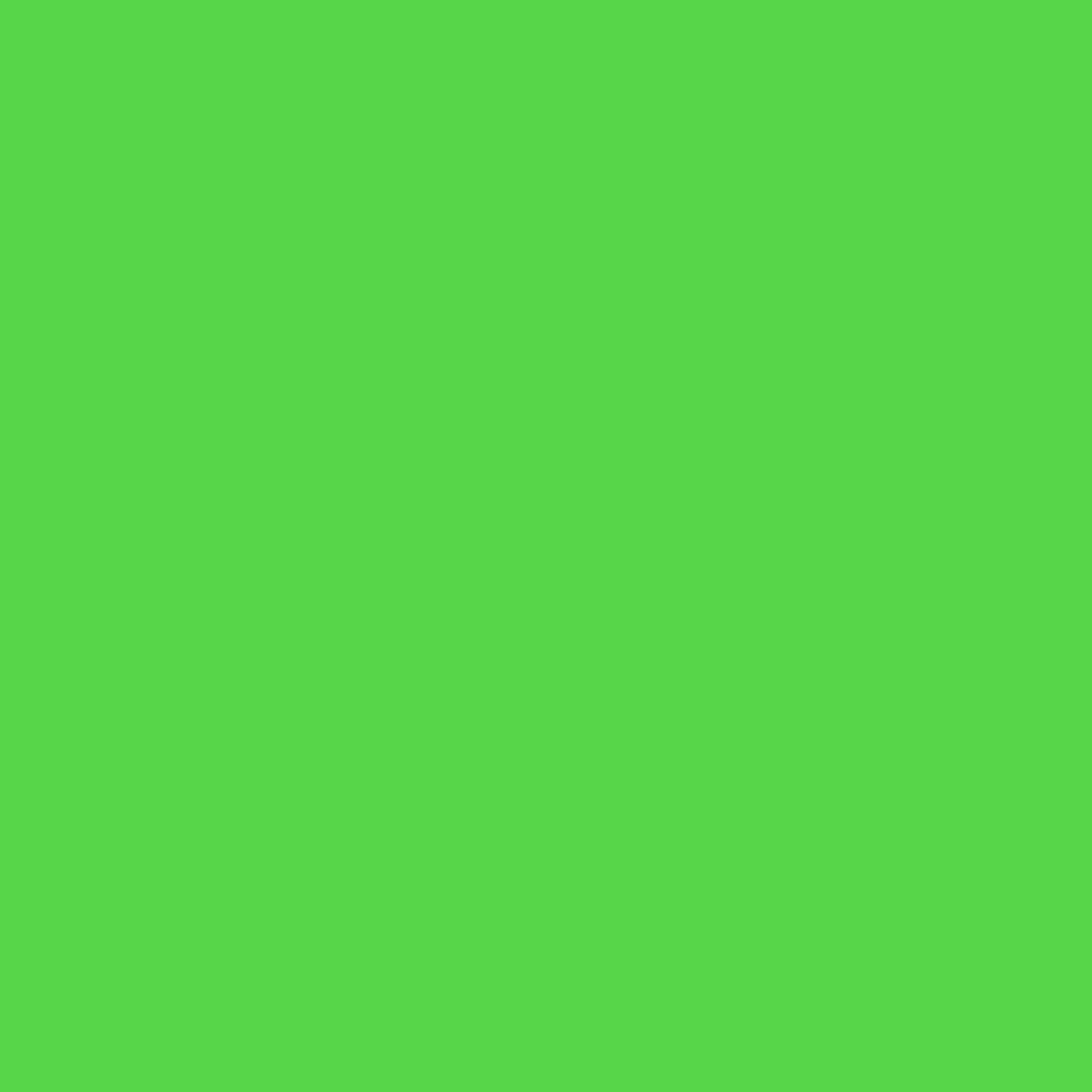 Prism Backdrop by Ravelli 10x20' Chromakey Green Muslin Photo Video Background, 100% Cotton, 150GSM Weight, Flocked on One Side, (9x18' after pre-shrinkage)