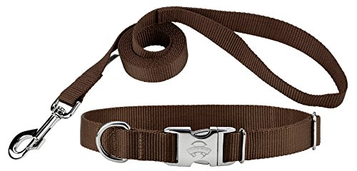Country Brook Design Premium Nylon Dog Collar and Leash - Brown - Large