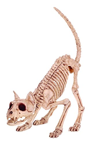 Crazy Bonez Skeleton Cat - Lil' Kitty Bonez
