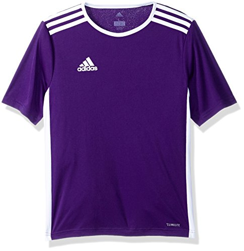 adidas Boys Soccer Entrada 18 Jersey, Core Purple, Medium