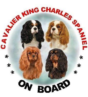 Window Stickers 2 x Cavalier King Charles Multi Dog ()