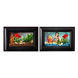 Hawkeye 0.75 Gallon Picture Frame Aquarium with LED Lighting set of two
