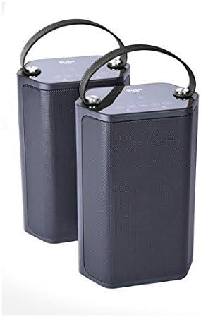 bush wireless speaker dual