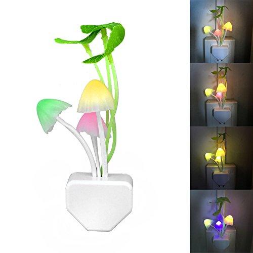 Eco Story Led Lighting - 4