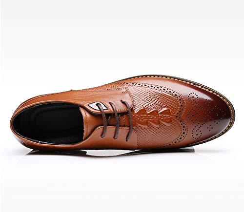 de de Hombres Puntiagudos Respirable Zapatos Brown patrón Zapatos XZP cuñas EU de Zapatos Black Cuero Hombres Size Negocios cocodrilo Tallado los 40 de de Casuales los Color xt507qU7d