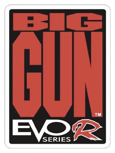 Big Gun Exhaust 09-15502 EVO R Full System, 1 Pack