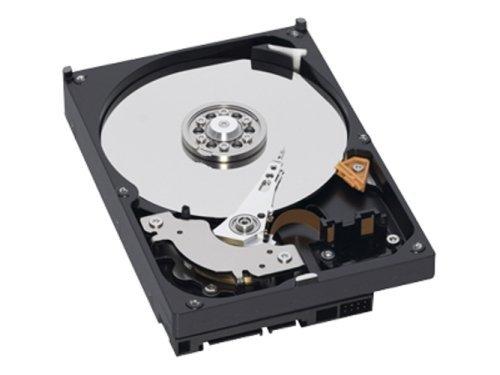 Sata 300 7200rpm 16mb Buffer (Western Digital WD5000AAKS 500GB SATA/300 7200RPM 16MB Hard Drive)