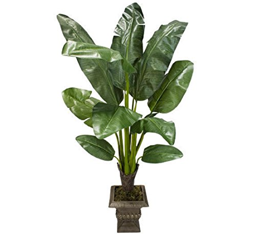 5' Banana Artificial Tropical Tree Silk Plant Palm 625 by Black Decor Home