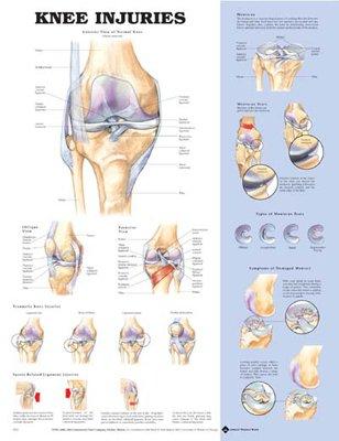 Knee chart timiznceptzmusic knee chart ccuart Gallery