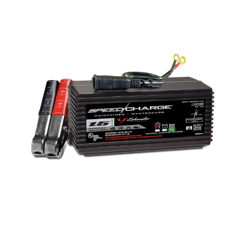 12 Volt Motorcycle Battery - 9