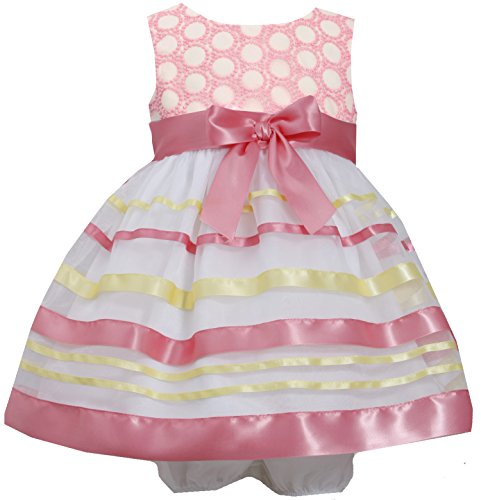 Baby-Girls Infant 12M-24M Embroidered Ribbon Organza Overlay Dress (24 Months, Coral)