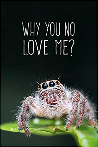 Why You No Love Me?: 6X9 Funny Spider Journal: Amazon.de: Songbird ...