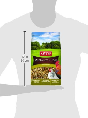 Kaytee Mealworms and Corn Treat, 3 Pound by Kaytee (Image #4)