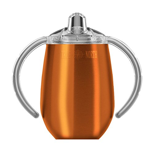 True North Stainless Steel Sippy Cup, 9 oz | Double Wall Vacuum Insulated (Jewel Copper) ()