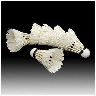 SODIAL(TM) 6PCS volani di piuma bianca per badminton
