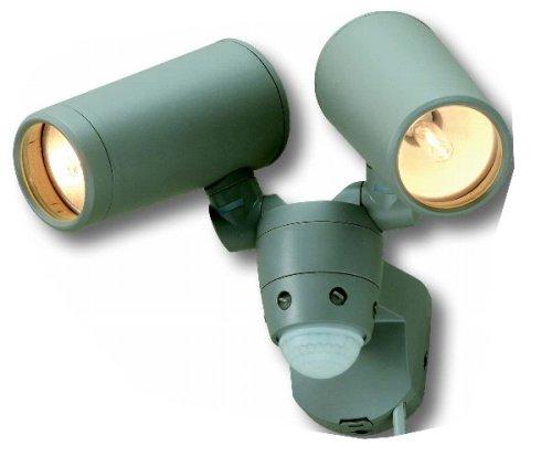 IQジャパン 高機能ハロゲンセンサライト 100Wハロゲン2灯タイプ EX-200(シルバーグレー) B001OC6BJ2