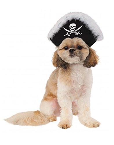Pet P (Halloween Pirates)