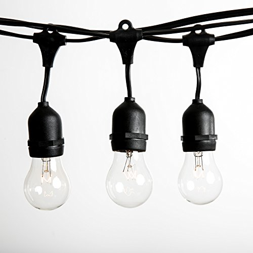 Hometown Evolution, Inc. 50 Foot E26 Commercial Outdoor String Lights with 25 Suspended Sockets and S14 Clear Bulbs for Weatherproof Heavy Duty Vintage Outside Lighting by Hometown Evolution, Inc.