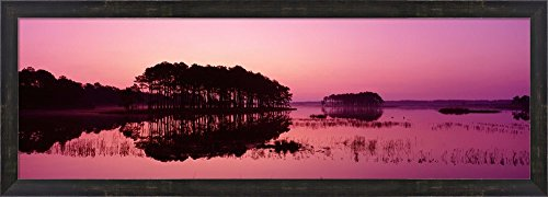 Panoramic View Of The National Forest During Sunset, Chincoteague National Wildlife Refuge, Virginia, USA by Panoramic Images Framed Art Print Wall Picture, Espresso Brown Frame, 38 x 14 inches