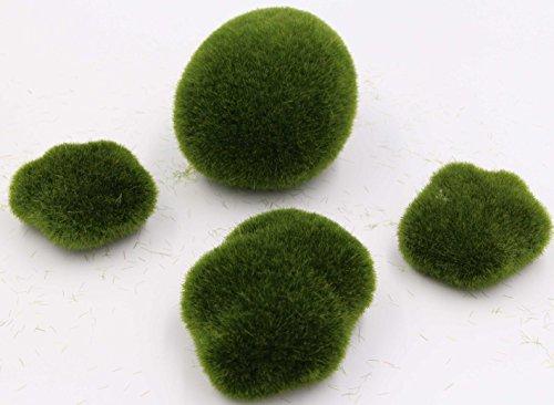 Hosleys Moss Balls Vase Filler 7 Oz Ideal For Vases Table Decor