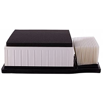 PG Air Filter PA8225| Fits 2015-19 Ford Transit-250, Transit-150, Transit-350, Transit-350 HD, Transit: Automotive