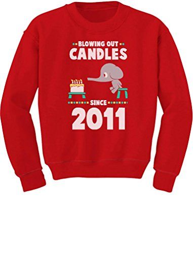 6th Birthday Gift Blowing Out Candles Since 2011 Toddler/Kids Sweatshirts 5/6 - Sweatshirt 2011