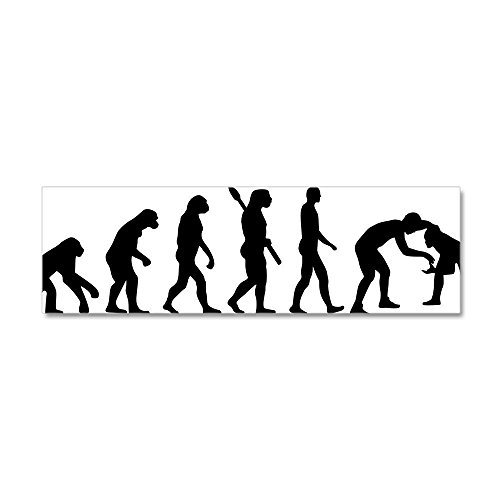 CafePress - Evolution Wrestling - 20x6 Wall Decal, Vinyl Wall Peel, Reusable Wall Cling