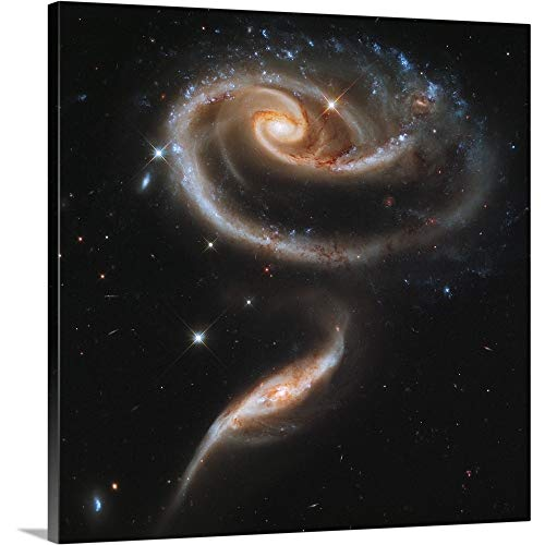 A Rose Made of Galaxies Highlights Hubble s 21st Anniversary Canvas Wall Art Print, 30 x30 x1.25