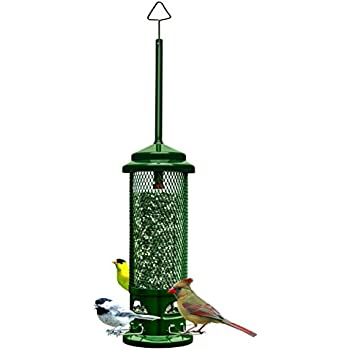 "Brome 1082  Squirrel Buster Legacy 5.5""x5.5""x24"" Wild Bird Feeder with 4 Metal Perches, 1.5qt/2.6lb Seed Capacity"