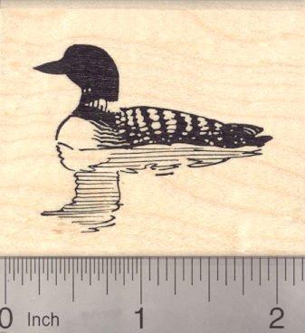 quatic Bird ()