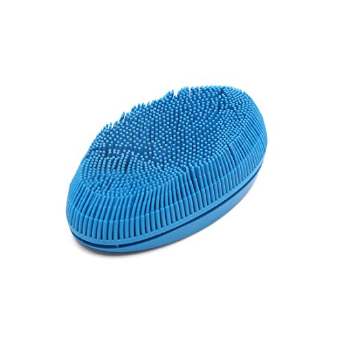 Oval Duster Brush (uxcell Blue Oval Rubber Windscreen Windshield Cleaning Washing Soft Brush for Car)