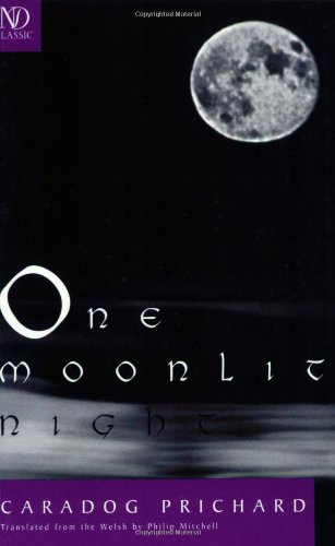 One Moonlit Night (New Directions Classic)
