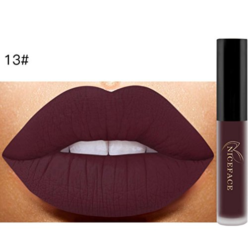 Hemlock Matte Lip Gloss, Lady Makeup Lipstick Waterproof Liquid Lipstick (A)