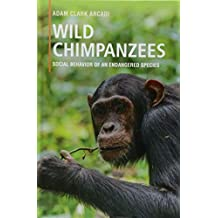 Wild Chimpanzees: Social Behavior of an Endangered Species