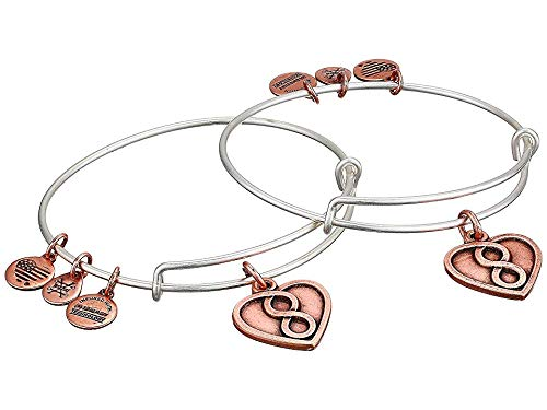 Alex and Ani Women's Mother Daughter Infinity Heart Set of 2 Bangle Two Tone One Size ()