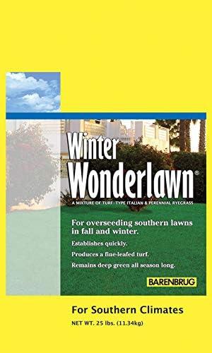 Barenbrug Winter Wonderlawn Overseeding Lawn Mix