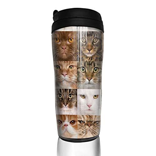 JysKsg 36 Cat Heads Breed British Shorthair 350ML Food Grade Tea Water Cup Insulated Coffee Mug Tumbler Coffee Cup Stainless Steel Travel Mug,Black