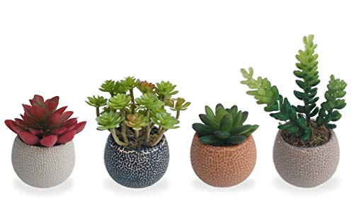 Conjunto 4 Suculenta Cores Arranjo Flor Artificial Vaso Em Cerâmica Estilo Kokedama