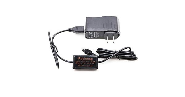 Amazon.com: AC-L200 AC-L25 A banco móvil de la energía Cable ...