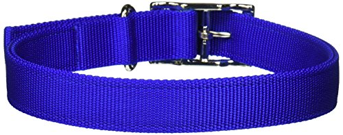 Coastal Pet Products DCP290122BLU Nylon Double Dog Collar, 1 by 22-Inch, Blue