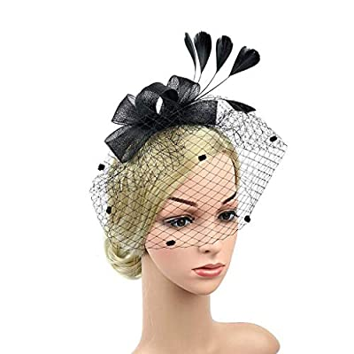 Merya Dress Kentucky Derby Fascinators Mesh Cocktail Headwear Feather DotVeil Tea Party Hat for Church Ball Wedding