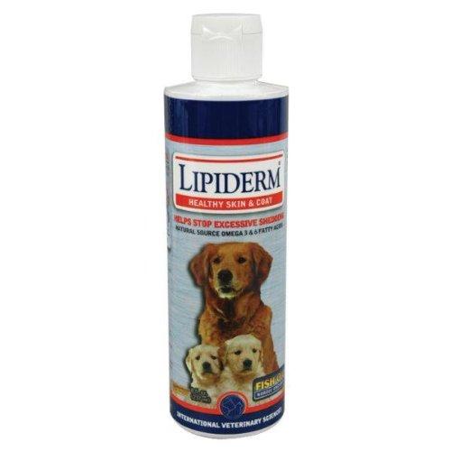 Lipiderm Canine Liquid – 8 oz, My Pet Supplies