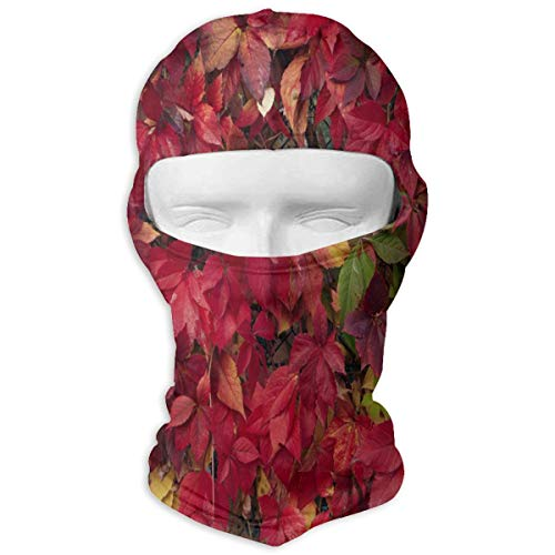 Balaclava How to Get Red Foliage Full Face Masks Ski Headcover Motorcycle Hood for Cycling Sports Snowboard (Driver Headcover Dragon)