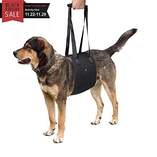 SUMURA Dog Lift Support Harness, Dog Sling Lift Helps Dogs with Weak Legs Stand, Walk, Get into Cars, Climb Stairs, Adjustable Dog Sling Help Paralyzed Legs Mobility and Recovery (Medium)