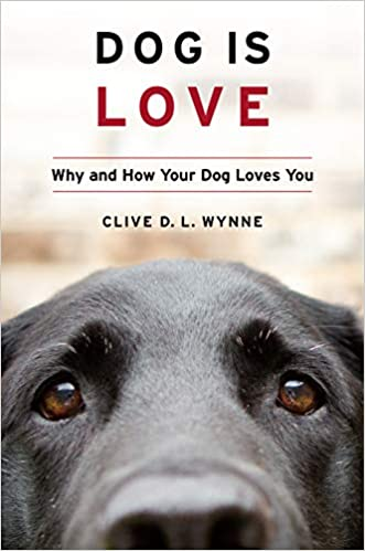 Любовь 1: Собака