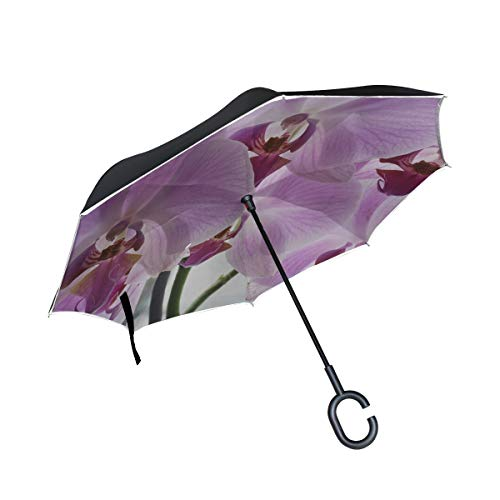 - Jnseff Double Layer Inverted Orchid Flowers Panicle Violet Potted Plant Umbrellas Reverse Folding Umbrella Windproof Uv Protection Big Straight Umbrella for Car Rain Outdoor with C-Shaped Handle