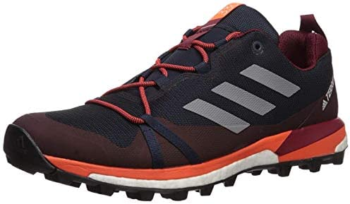 adidas outdoor Men s Terrex Skychaser Lt Walking Shoe