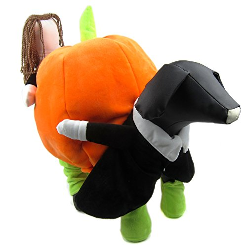Alfie Pet by Petoga Couture - Peyton Pumpkin carrying Costume - Size: Medium (Pumpkin Outfit For Dogs)