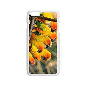 Queued Bird Hight Quality Plastic Case for Iphone 6