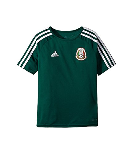 adidas Kids Boy's Mexico Home Fanshirt (Little Kids/Big Kids) Collegiate Green/White Medium ()
